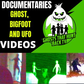 True Ghost Bigfoot and UFO Stories