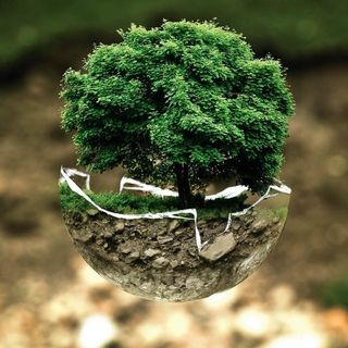 Buon 5 giugno, siamo gentili con la Terra!
