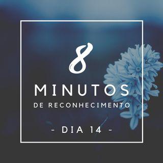 8 Minutos de Reconhecimento - Dia 14