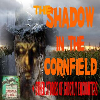 The Shadow in the Cornfield and Other Stories of Ghostly Encounters | Podcast E41