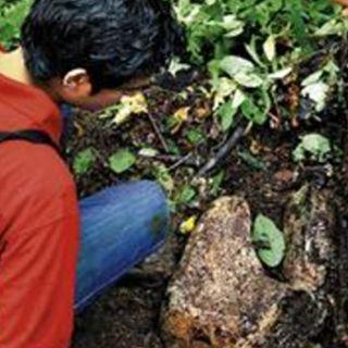 Have You Heard? Lost City 'Ciudad Blanca' Discovered In Honduras'