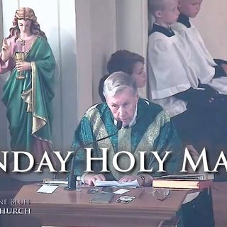 Sermon for the 28 Sunday in Ordinary Time. Oct. 10, 2021.  St. Mary of Pine Bluff, WI, USA