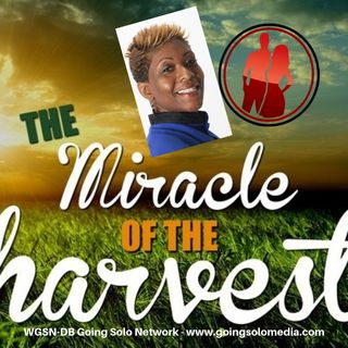 Miracle Harvest  Part 4 - Davida Smith