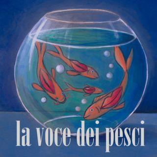 Michele Bravi e Selvaggia Lucarelli - Le Parole