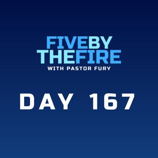 Day 167 - Truth, Hypocrisy, and The Fruit of Peace