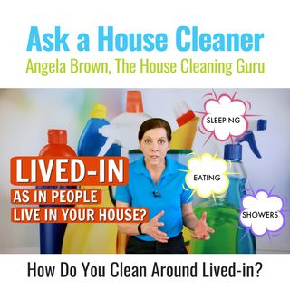 "How To You Clean Around ""Lived-In"" - Tidying Up Tips"