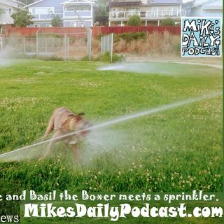 MIKEs-DAILY-PODCAST-1673-Meddle
