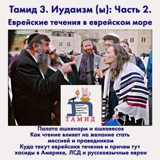 Тамид 3: Иудаизм (Ы) Часть 2. Еврейские течения в еврейском море