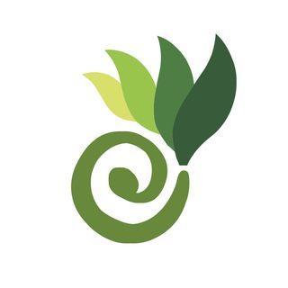 Best Resveratrol Supplement - HerbalCart