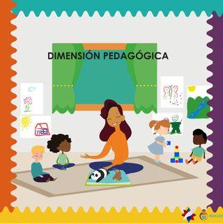 Dimensiones del Currículo