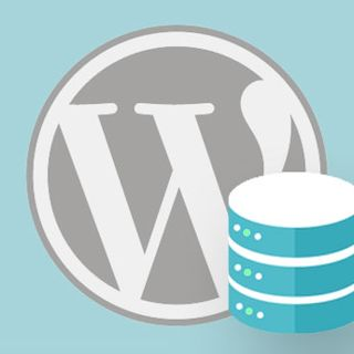 What to Look For In a WordPress Backup Software