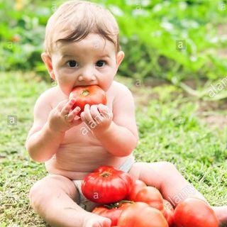 5.- Taller de productividad. Pon tomates en tu trabajo: la clave para no llegar fundido por la noche.