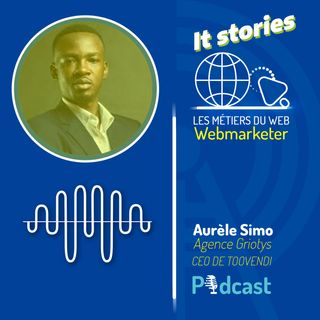 IT STORIES #2 LE METIER DE WEBMARKETER AVEC AURELE SIMO