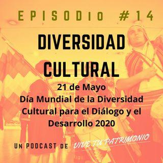 #14 Diversidad Cultural
