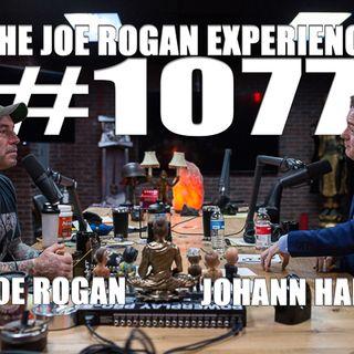 #1077 - Johann Hari