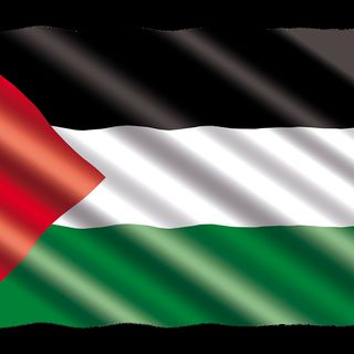 P for Palestine