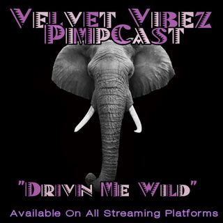 Drive Me Wild Ep. 32