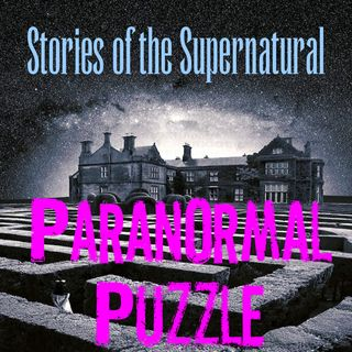Paranormal Puzzle | Interview with John Griffin II | Podcast