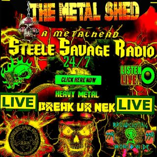 Flashback Episode - The MeTaL sHeD's show