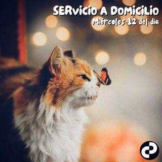 Servicio a domicilio 89