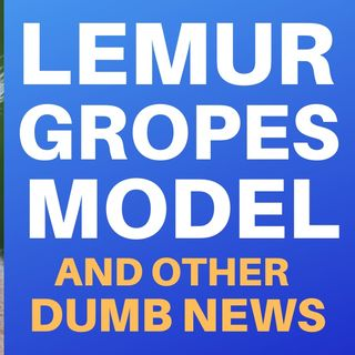 RANDOM STUPID NEWS - LEMUR GROPES MODEL AND MORE