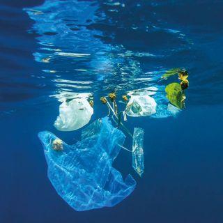 El mundo un basurero de plásticos