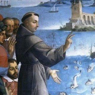 La predica ai pesci servì a Sant'Antonio per combattere l'eresia