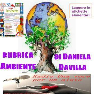 RUBRICA AMBIENTE: LE ETICHETTE ALIMENTARI