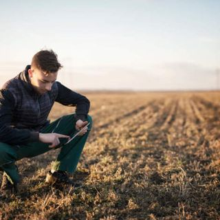 L'agricoltura investe  e crede al domani