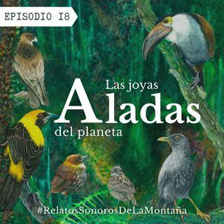 EP18: Las joyas aladas del planeta