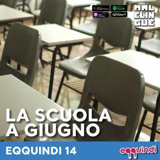 Eqquindi #14 - La scuola a giugno