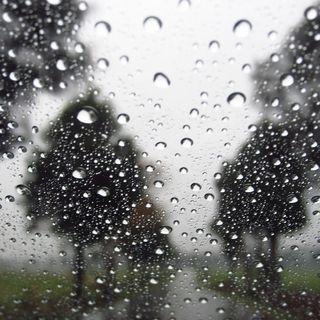 #cspt Precipitazioni
