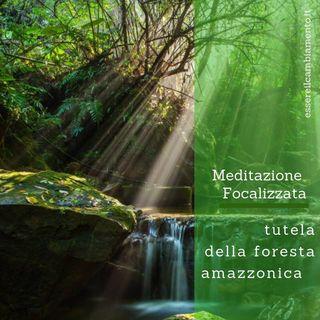 Meditazione focalizzata per la tutela della foresta amazzonica