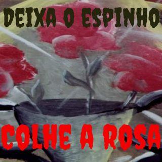 Deixa O Espinho Colhe A Rosa