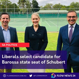 Ashton Hurn wins pre-selection for safe Liberal seat of Schubert
