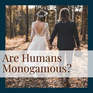 Are Humans Monogamous? (repost)