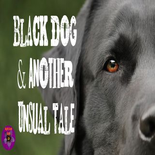 Black Dog and Another Unusual Tale | Podcast