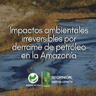 Impactos ambientales irreversibles por derrame de petróleo en la Amazonía