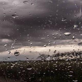 Tutto Qui - lunedì 4 giugno - L'allerta gialla in alcune zone del Piemonte per le piogge