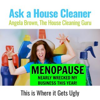 Menopause Almost Wrecked My Business this Year