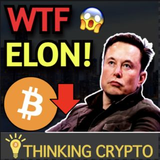 Bitcoin Crashes As Elon Musk Says Tesla Not Accepting BTC Anymore & Stan Druckenmiller Crypto & Inflation!