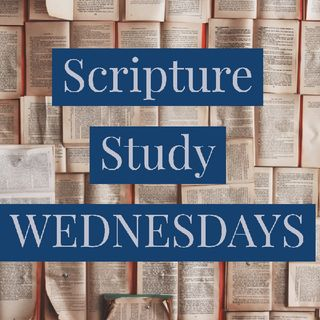 EP 15 - Am I Any Good At Following Christ?  - SCRIPTURE STUDY  - Priceless.  Shara Ogilvie