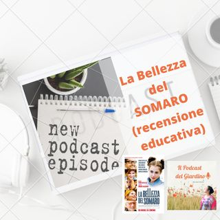 La Bellezza del Somaro: recensione educativa film