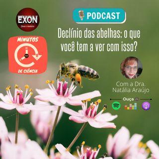 Episódio 7 - Declínio das abelhas: o que você tem a ver com isso?