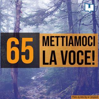 65 - Erranti e insegnanti a voce alta