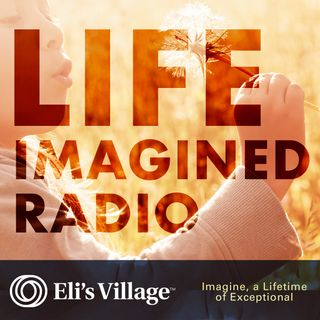 A Life Imagined: The Complexity of Divorce for Exceptional Needs Families