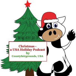 Christmas USA Holiday