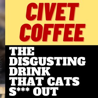 THE DISGUSTING LUXURY COFFEE MADE FROM CAT S***