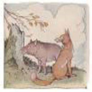 The Wild Boar & The Fox