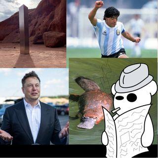 Maradona e Elon Musk fanno cose nello Utah